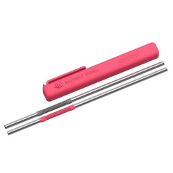 STAINLESS STEEL REUSABLE STRAW (PS2)